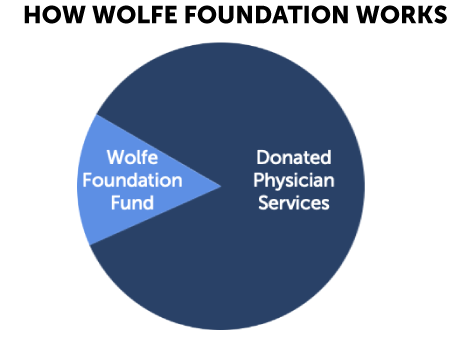 Pie chart depicting how Wolfe Foundation works.
